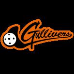 Sokol Brno I EMKOCase Gullivers